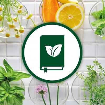 plantes et ingredients