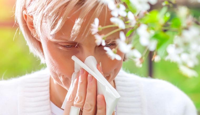 Pathologie Rhinite Allergique