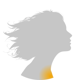 Toux et Bronchite